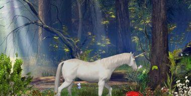 Enchanted Forest Screensaver 3.11