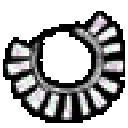 chumash-abalone-necklace