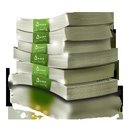 papermoney256