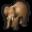 elephant_32