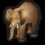 elephant_64