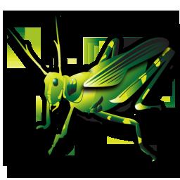 grasshopper_256