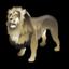 lion_64