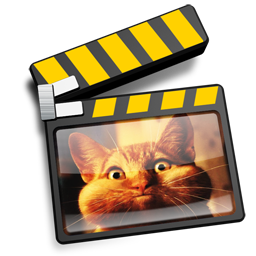 imovie-cat