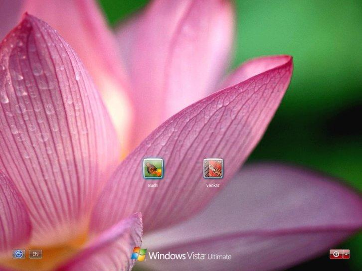 Lotus logon screen for xp