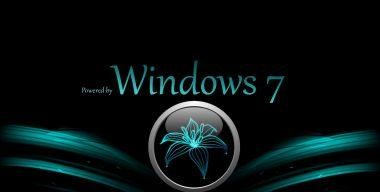 Win 7-Logon-background-Lilie