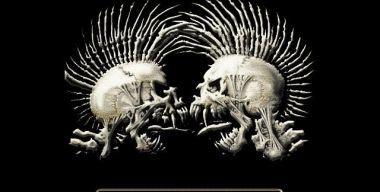 Punk Skulls
