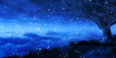 Ночная зима