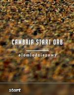 Cambria Start Orb