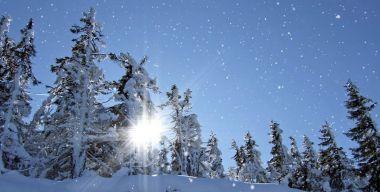 Зимний снегопад