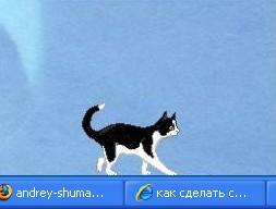 Cat Feliks Rus