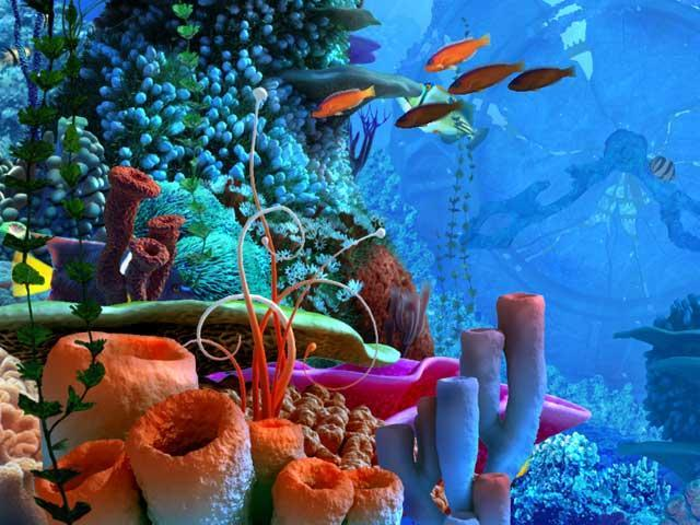 Coral clock