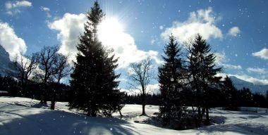 Восхищение снегопадом