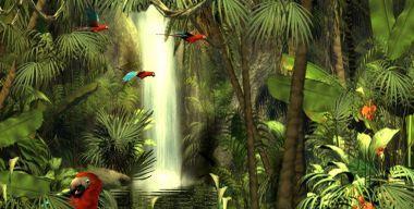 3D Rain Forest Adventure