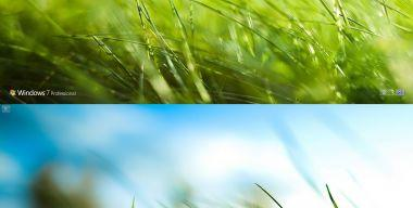 Aero Grass Logon Windows 7