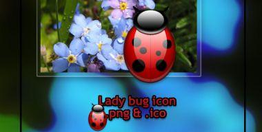 Fatboy72.Lady_Bug