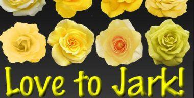 Love to Jark Rose Icon And Png
