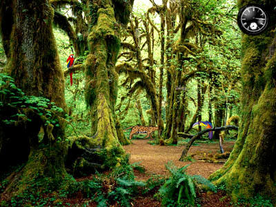 Тропический Лес 1.0