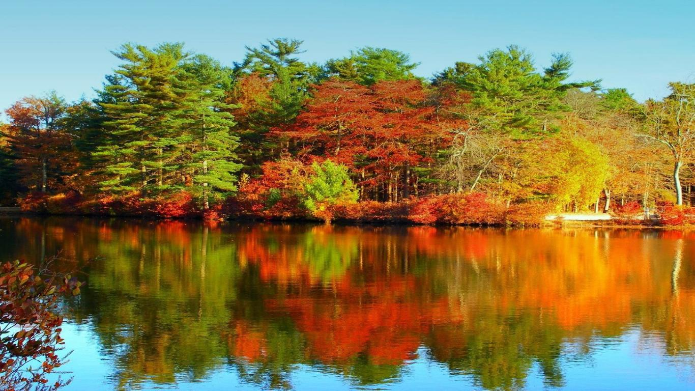 заставка Осень на озере...