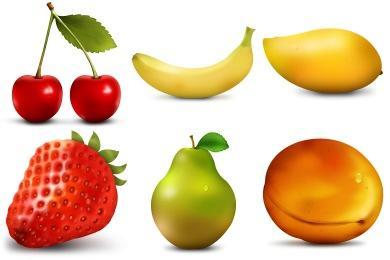 Paradise Fruits
