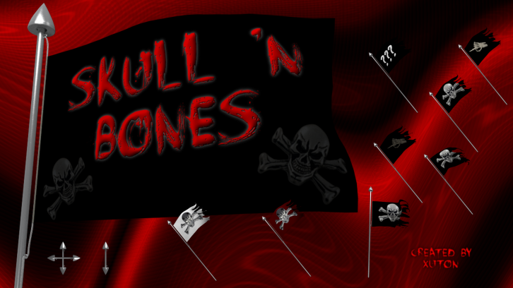 Pirate flag - skull and bones